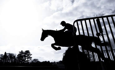Silhouette of horse jumping