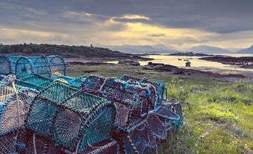 Lobster traps in the sunset