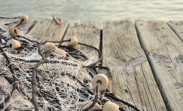 Recycling fishing gear is a net positive for startups and oceans featured image