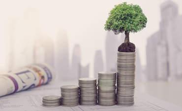 saving money with trees