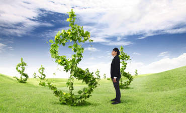 How businesses are banking on natural capital featured image