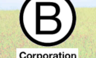 B Corporations: Verified Sustainability featured image