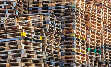 Sustainability and pallets: Making change for the long haul featured image