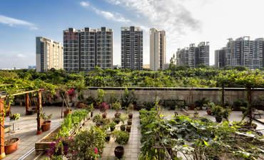 View of an urban garden in the Panyu District in Guangzhou, China.