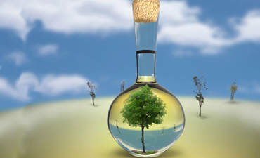 Bio-based chemicals: When green is toxic featured image