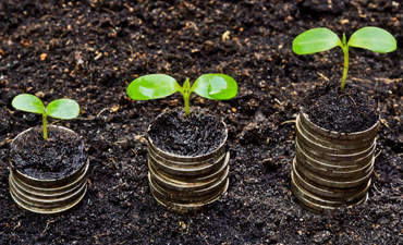 Private equity has room for growth on sustainability featured image