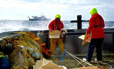 Big data helps scientists watch ocean plastic gyres form featured image