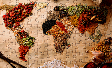 the world map in food as a puzzle