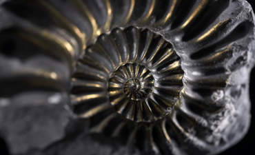 Inside the strange, circular world of advanced materials featured image