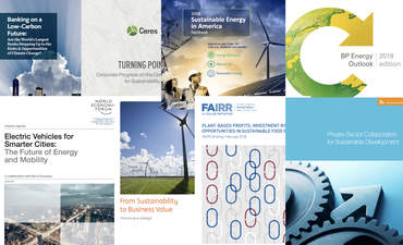 Report Report: Low-carbon banking, plant-based economics, private-sector collaboration featured image