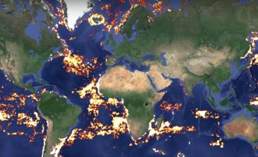 Skytruth global fishing data visualization