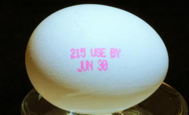 food expiration date egg