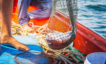 Slavery in seafood: An old problem gets a new tool featured image