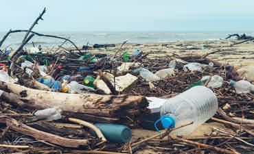 Ocean plastic on beach