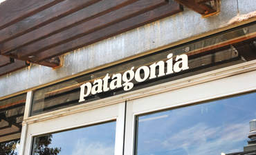 Is governance the unexplored secret behind Patagonia's business success? featured image