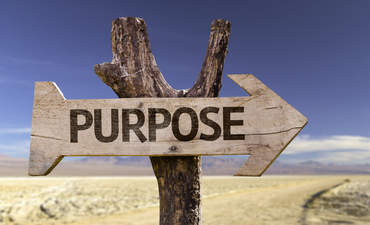 Purpose in action: the secret to building and sustaining high-performance organizations featured image