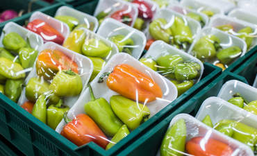 The link between food waste and packaging featured image