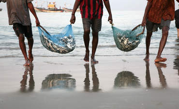 Sustainable Development Goal 14: Conserve the ocean featured image