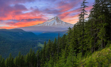 Oregon delivers huge clean energy win featured image