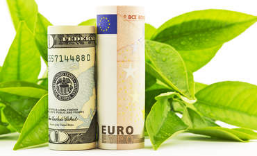 How to invest in green bonds featured image
