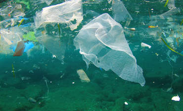 NGOs alone will not turn the tide on ocean trash  featured image