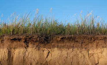 Turning dirt into climate goals via carbon farming featured image