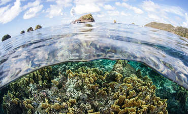 'Fitbit for the oceans' aims to boost ailing seas featured image