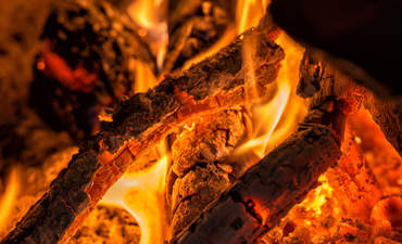 burning wood for renewable energy