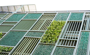 Building industry poised to double green certifications by 2018 featured image