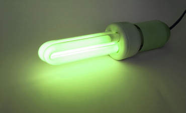 green light sustainability and economic growth