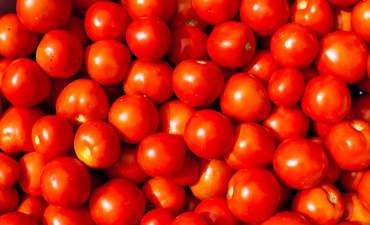 food scarcity USDA partnerships