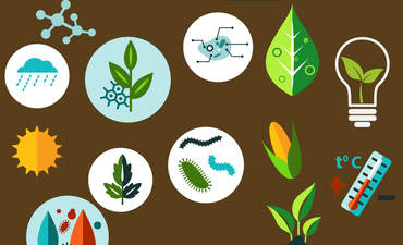 Agriculture lab icons