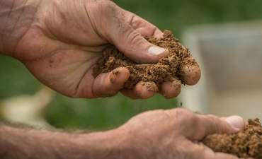 Why General Mills aims to harvest the $50 billion benefits of healthy soil featured image