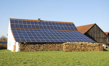 Cultivating the coexistence of agriculture and solar farms featured image