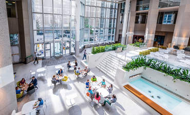 Green buildings boost health, productivity and value for investors featured image