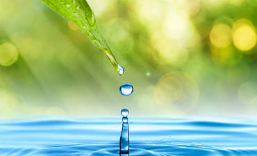 Businesses wise up to supply-chain water risks featured image