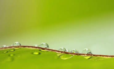 How enlightened self-interest in sustainable water helps business featured image