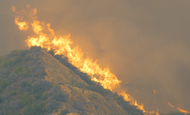 Wildfire in California hills