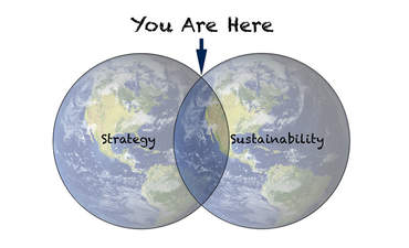 Why boards and C-suites should fuse sustainability with strategy featured image