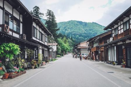 An urban forest in Shirakawa-Go, Japan.
