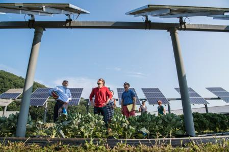 NREL researcher discuss panel orientation and spacing. Working with teams from UMass Clean Energy Extension and Hyperion on a photovoltaic dual-use research project at the UMass Crop Animal Research and Education Center in South Deerfield, MA.