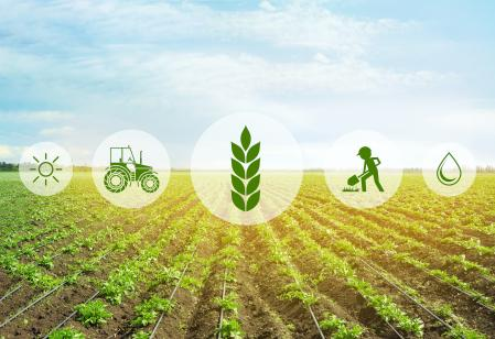 Stock art to suggest investments in food systems