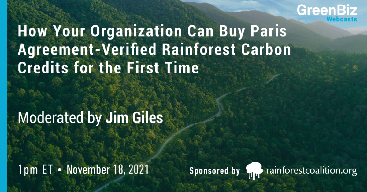 How Your Organization Can Buy Paris Agreement-Verified Rainforest Carbon Credits for the First Time