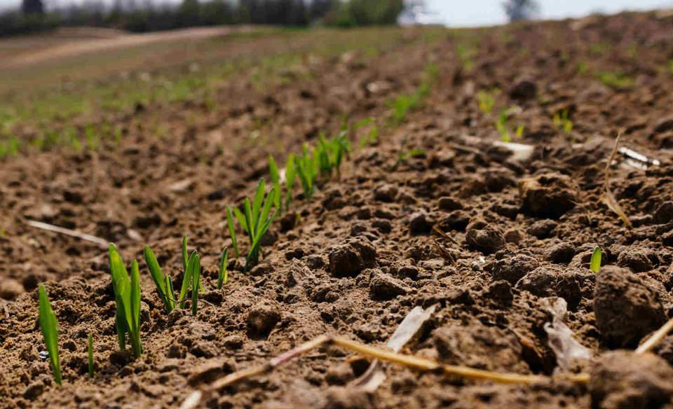 New USDA program to reduce farm carbon emissions
