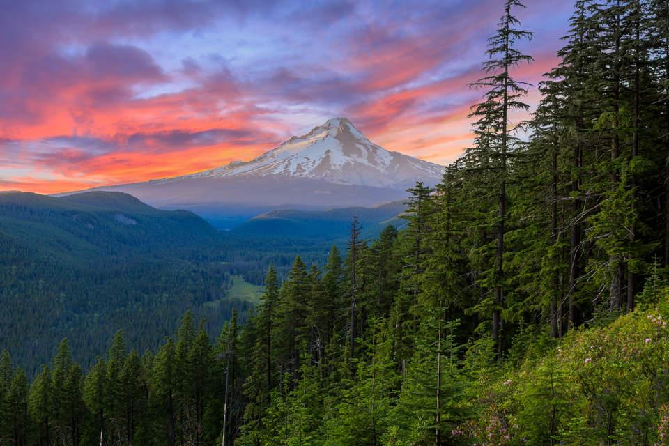Oregon delivers huge clean energy win