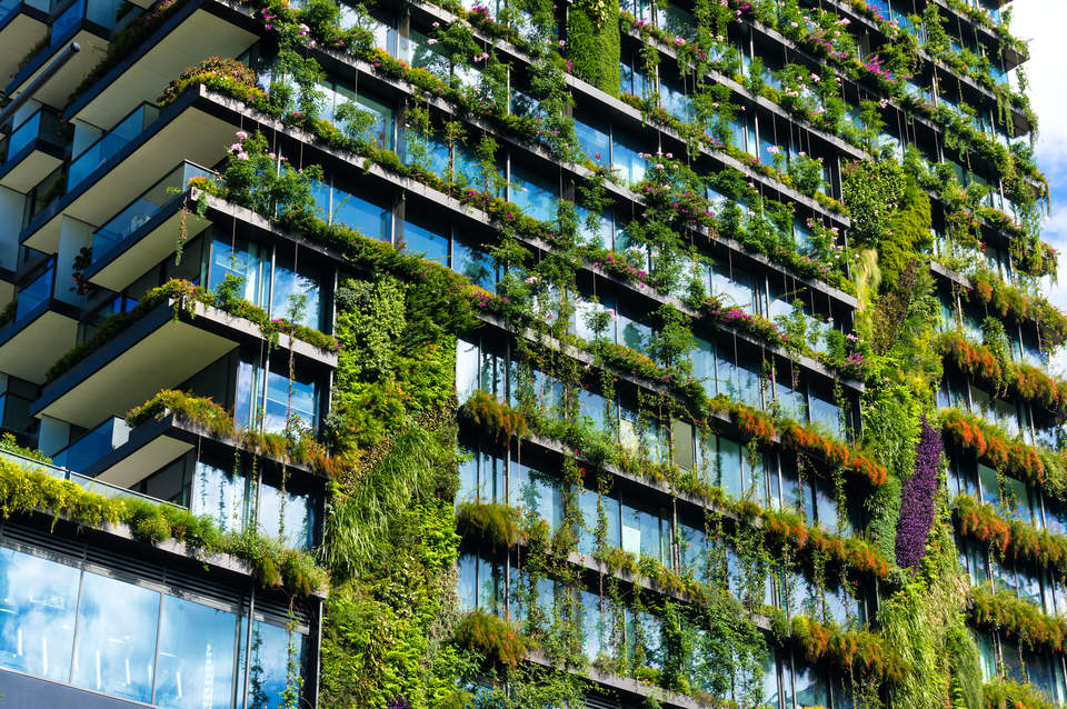 Could Stretch Codes Supercharge The Green Building