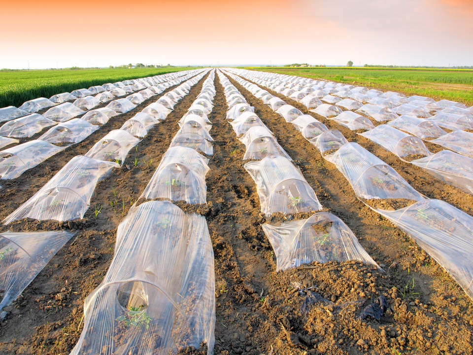 How can agriculture solve its $5.87 billion plastic problem?