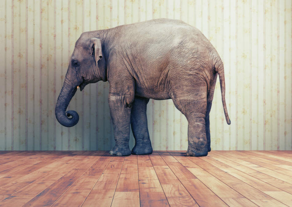 The elephant in the room for corporate emissions goals | GreenBiz