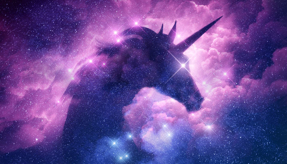 Meet Tesla S Unicorn Greenbiz