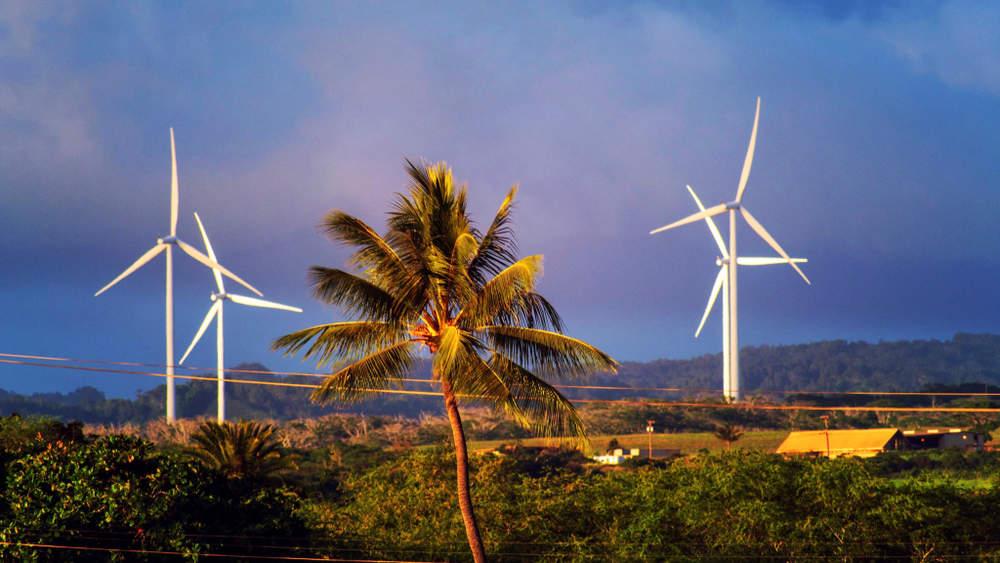 Windmill turbines in Haleiwa, on the countryside of Oahu, Hawaii